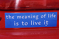 /images/133/2006-02-divide-meaning-sign.jpg - #02691: The meaning of Life is to Live it … images of Divide … Feb 2006 -- Divide, Colorado