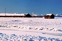 /images/133/2006-02-hartsel-snow-buf-shacks.jpg - #02730: Shacks by Hartsel … Feb 2006 -- Hartsel, Colorado
