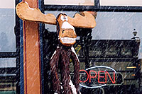/images/133/2006-03-isprings-bears-moose.jpg - #02833: Carved Moose at `Giggling Grizzly` by Open sign … images of Idaho Springs … March 2006 -- Idaho Springs, Colorado