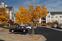 /images/133/2006-10-01-lone-fall22.jpg - #02902: Remington residence in Lone Tree … Oct 2006 -- Remington, Lone Tree, Colorado