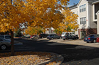 /images/133/2006-10-01-lone-fall23.jpg - #02903: Remington residence in Lone Tree … Oct 2006 -- Remington, Lone Tree, Colorado