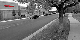 /images/133/2006-10-08-cent-wolf-bw-w.jpg - #02968: Wolf Camera in Centennial … Oct 2006 -- Centennial, Colorado
