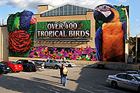 /images/133/2006-10-15-niag-birds01.jpg - #03010: Over 400 Tropical Birds - Macaw picture … images of Niagara Falls … Oct 2006 -- Niagara Falls, Ontario.Canada