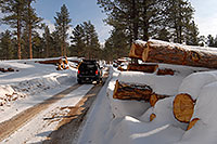 /images/133/2007-01-27-sed-logs-xterra1.jpg - #03377: Xterra by snowy logs  … Jan 2007 -- Turnbull, Colorado