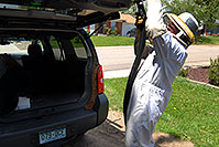 /images/133/2007-05-20-lake-bee-keeper1.jpg - #03794: Beekeeper Phil moving bees to a new home - A swarm of 2,500 bees with a queen moved into the back of my Xterra … May 2007 -- Lakewood, Colorado