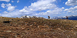 /images/133/2007-06-10-elbert-skier2-pano.jpg - #03899: Skier and hiker with dogs  walking up the North Trail of Mt Elbert, Colorado