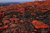 /images/133/2007-06-30-evans-morn-rocks.jpg - #04100: sunrise colors at Mt Evans … June 2007 -- Mt Evans, Colorado