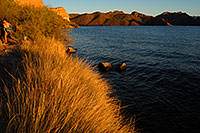 /images/133/2007-10-07-sag-eve-5980.jpg - #04711: Evening at Saguaro Lake … Oct 2007 -- Saguaro Lake, Arizona