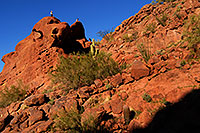 /images/133/2008-03-09-camelback-3818.jpg - #04869: Hikers at Camelback Mountain in Phoenix … March 2008 -- Camelback Mountain, Phoenix, Arizona