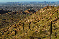 /images/133/2008-03-14-southm-4134.jpg - #04889: View North at Phoenix from South Mountain … March 2008 -- South Mountain, Phoenix, Arizona