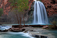 /images/133/2008-03-23-hav-havasu-5544.jpg - #04948: Havasu Falls - 120 ft drop (37 meters) … March 2008 -- Havasu Falls!, Havasu Falls, Arizona