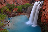 /images/133/2008-03-23-hav-havasu-5617.jpg - #04951: Havasu Falls - 120 ft drop (37 meters) … March 2008 -- Havasu Falls!, Havasu Falls, Arizona