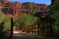 /images/133/2008-04-20-hav-navajo-3701.jpg - #05229: Hiker crossing the second bridge from Havasu Falls, by Navajo Falls … April 2008 -- Havasu Falls, Arizona