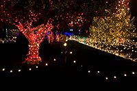 /images/133/2008-12-16-mesa-temple-64450.jpg - #06480: Mesa Temple Garden Christmas Lights Display … December 2008 -- Mesa Arizona Temple, Mesa, Arizona