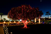 /images/133/2008-12-30-mesa-temple-lights-69800.jpg - #06689: Christmas lights by Mesa Arizona Temple … December 2008 -- Mesa Arizona Temple, Mesa, Arizona
