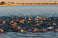 /images/133/2009-09-24-tempe-splash-swim-113006.jpg - #07454: 00:01:10 into the race - Splash and Dash Fall #1, Sept 24, 2009 at Tempe Town Lake … September 2009 -- Tempe Town Lake, Tempe, Arizona