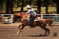 /images/133/2010-06-05-naha-horses-speed-2388.jpg - #08108: NAHA Turn and Burn event in Flagstaff … June 2010 -- Fort Tuthill County Park, Flagstaff, Arizona