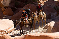 /images/133/2010-06-19-havasu-people-6262.jpg - #08164: Riders along Havasupai Trail … June 2010 -- Havasupai Trail, Havasu Falls, Arizona
