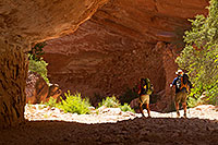 /images/133/2010-06-19-havasu-people-6317.jpg - #08138: Hikers along Havasupai Trail … June 2010 -- Havasupai Trail, Havasu Falls, Arizona
