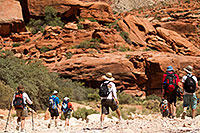 /images/133/2010-06-21-havasu-people-7590.jpg - #08176: Hikers heading to Supai along Havasupai Trail … June 2010 -- Havasupai Trail, Havasu Falls, Arizona