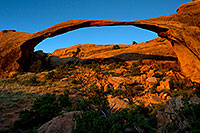 /images/133/2010-09-11-arches-landscape-32601.jpg - #08658: Landscape Arch in Arches National Park … September 2010 -- Landscape Arch, Arches Park, Utah