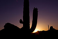 /images/133/2011-05-14-supers-star-68425.jpg - #09176: Sunset in Superstitions … May 2011 -- Superstitions, Arizona