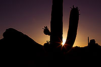 /images/133/2011-05-15-supers-star-70789.jpg - #09177: Sunset in Superstitions … May 2011 -- Superstitions, Arizona