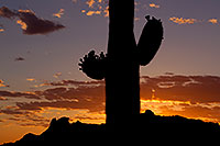 /images/133/2011-05-20-supers-sunset-71195.jpg - #09206: Sunset in Superstitions … May 2011 -- Superstitions, Arizona