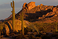 /images/133/2011-05-22-supers-morning-71281.jpg - #09214: Morning in Superstitions … May 2011 -- Superstitions, Arizona