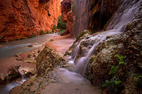 /images/133/2011-06-25-havasu-mooney-small-79561.jpg - #09342: Near Mooney Falls … June 2011 -- Havasu Creek, Havasu Falls, Arizona