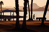 /images/133/2012-01-19-havasu-sunrise-walk-140136.jpg - 10009: Morning in Lake Havasu City, Arizona … January 2012 -- Beach Park, Lake Havasu City, Arizona