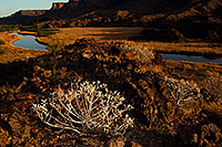 /images/133/2012-03-26-bill-will-evening-151058.jpg - #10096: Bill Williams River at Lake Havasu … March 2012 -- Bill Williams River, Lake Havasu, Arizona