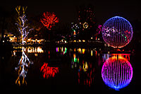 /images/133/2012-12-25-phoenix-zoo-lights2-10542.jpg - #10525: Phoenix Zoo Lights … December 2012 -- Phoenix Zoo, Phoenix, Arizona