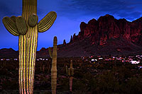 /images/133/2013-03-05-supers-cactus3-29101.jpg - #10866: View of Superstitions … March 2013 -- Superstitions, Arizona