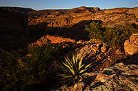 /images/133/2013-04-21-supers-dirt-r-agave-37058.jpg - #11064: Apache Trail mountains in the evening … April 2013 -- Apache Trail Road #2, Superstitions, Arizona