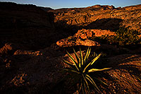 /images/133/2013-04-23-supers-dirt-r-agave-37101.jpg - #11069: Apache Trail mountains in the evening … April 2013 -- Apache Trail Road #2, Superstitions, Arizona