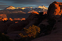 /images/133/2013-11-09-la-sal-mount-1d4_4435.jpg - #11298: La Sal Mountains in Moab … November 2013 -- La Sal Mountains, Moab, Utah