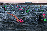 /images/133/2013-11-17-ironman-swim-1dx_0119.jpg - #11363:  - Swimming at Ironman Arizona 2013 … November 2013 -- Tempe Town Lake, Tempe, Arizona