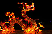 /images/133/2014-01-31-fhills-chin-dragon-5d2_0423.jpg - #11704: Dragons at Chinese New Year Lantern Culture and Arts Festival 2014 … January 2014 -- Fountain Hills, Arizona