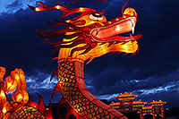/images/133/2014-01-31-fhills-chin-new-5d2_0045.jpg - #11712: Dragon at Chinese New Year Lantern Culture and Arts Festival 2014 … January 2014 -- Fountain Hills, Arizona