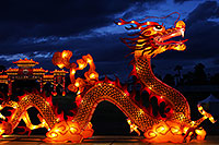 /images/133/2014-01-31-fhills-chin-new-5d2_0056.jpg - #11713: Dragon at Chinese New Year Lantern Culture and Arts Festival 2014 … January 2014 -- Fountain Hills, Arizona