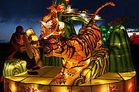 /images/133/2014-02-01-fhills-chin-tiger-5d2_0680.jpg - #11720: Xiang Long Fu Hu can defeat the tiger and the dragon - Chinese New Year Lanterns … February 2014 -- Fountain Hills, Arizona