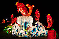 /images/133/2014-02-02-fhills-chin-fish-5d2_1051.jpg - #11729: Fish at Chinese New Year Lantern Culture and Arts Festival 2014 … February 2014 -- Fountain Hills, Arizona