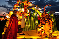 /images/133/2014-02-04-fhills-chin-tiger-5d2_1601.jpg - #11753: Xiang Long Fu Hu can defeat the tiger and the dragon - Chinese New Year Lanterns … February 2014 -- Fountain Hills, Arizona