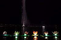 /images/133/2014-02-09-fhills-chin-lill-5d2_3268.jpg - #11769: Water Lillies at Chinese New Year Lantern Culture and Arts Festival 2014 … February 2014 -- Fountain Hills, Arizona