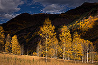 /images/133/2015-09-28-maroon-bells-trees-5d3_4208.jpg - #12644: Maroon Bells, Colorado … September 2015 -- Maroon Bells, Colorado