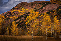 /images/133/2015-09-29-maroon-bells-trees-5d3_4559.jpg - #12648: Maroon Bells, Colorado … September 2015 -- Maroon Bells, Colorado