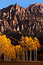 /images/133/2015-10-03-owl-creek-trees-5d3_6266v.jpg - #12654: Images of Owl Creek Pass … October 2015 -- Owl Creek Pass, Colorado