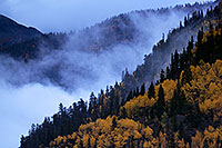 /images/133/2016-09-30-fog-trees-6-6d_3983.jpg - #13103: Morning at Crystal Lake … October 2016 -- Red Mountain Pass, Colorado