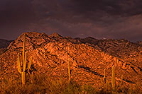 /images/133/2017-07-10-catalina-monsoon-1x_56337.jpg - #13937: Santa Catalina Mountains … July 2017 -- Santa Catalina Mountains, Arizona